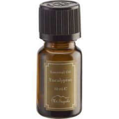 Ätherisches Öl Eukalyptus, Essential Oil Eucalyptus 10ml